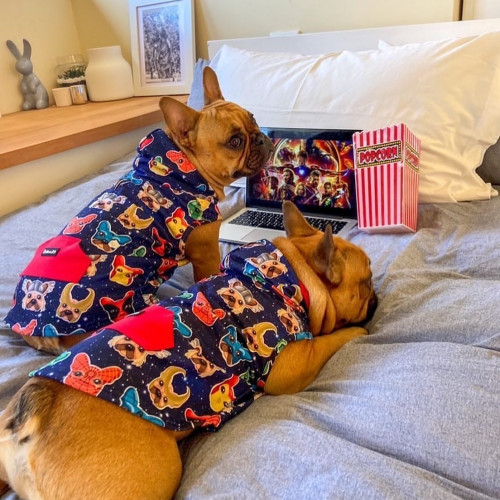 Weekend plans?🤔 Pupflix & chill🍿