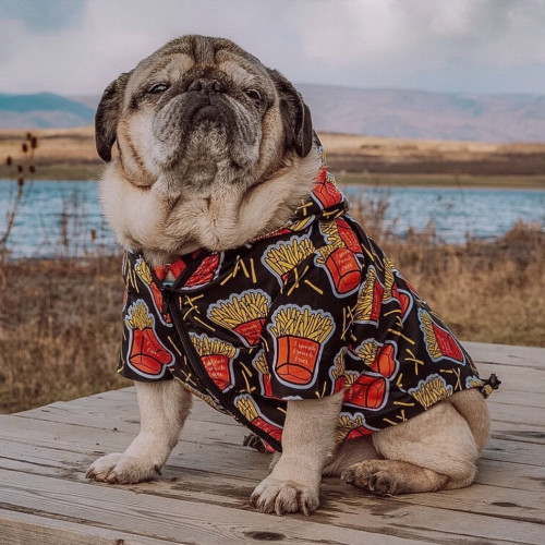 Let's celebrate the National French Fries day🍟 with 40% off on our Frenchie Fries Raincoat!❤️